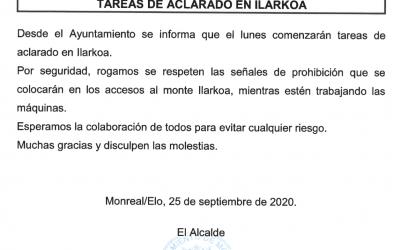 TAREAS DE ACLARADO EN ILARKOA
